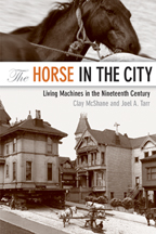 Horse in the City book cover